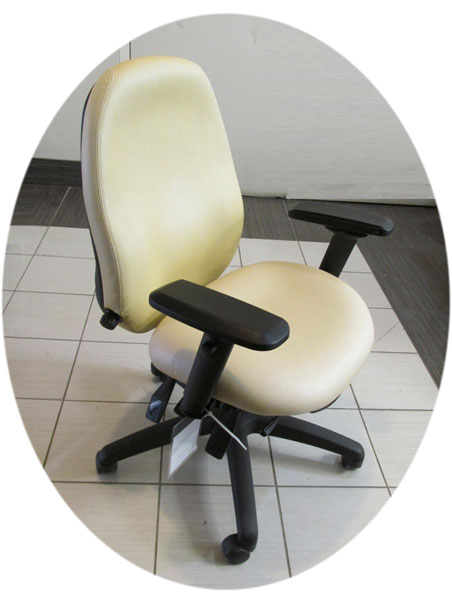 Used Dexter Chair, Used health care chairs, Toronto GTA