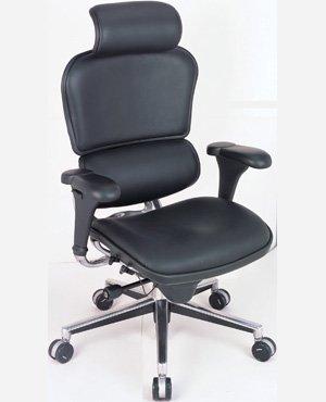Ergohuman Leather Executive Chair Office Furniture