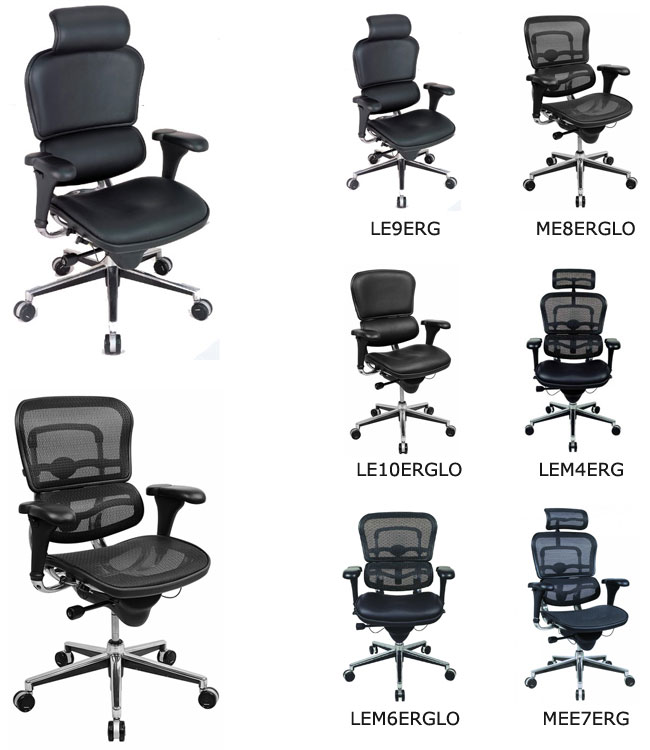 Ergohuman V1 Chair
